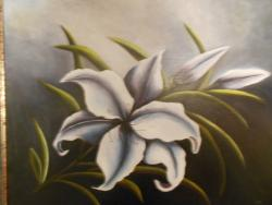 Picturi cu flori Crinul.