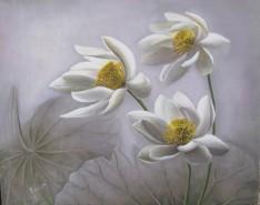 Picturi cu flori Nuferi albi