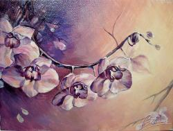 Picturi cu flori flori-Orhidee