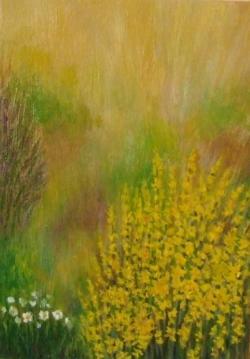 Picturi cu flori Tufa de forsythia (1)
