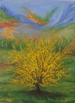 Picturi cu flori Tufa de forsythia (2)