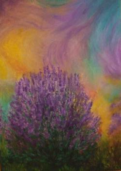 Picturi cu flori Tufa de lavanda