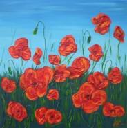 Picturi cu flori Maci 02
