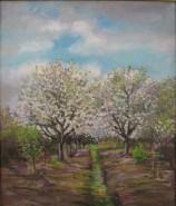 Picturi cu flori Ciresi infloriti