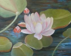 Picturi cu flori NUFAR 2