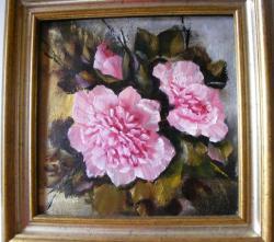 Picturi cu flori Bujori in glorie
