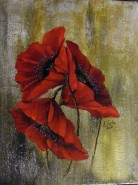 Picturi cu flori Maci poetici
