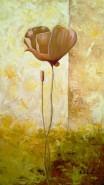 Picturi cu flori Mac