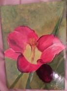 Picturi cu flori Regina rosie