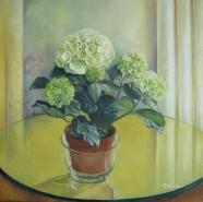 Picturi cu flori Hortensia