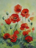 Picturi cu flori Maci 6