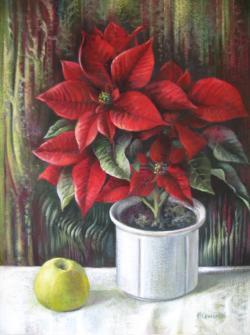 Picturi cu flori Steaua de craciun