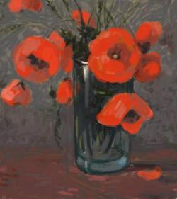 Picturi cu flori maci de camp 6