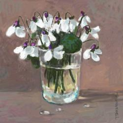 Picturi cu flori toporasin albi  in pahar 41.