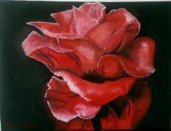 Picturi cu flori trandafir21