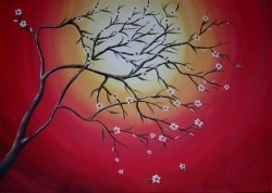 Picturi cu flori Apricot tree