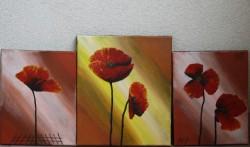 Picturi cu flori Poppies 3