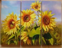 Picturi cu flori Cununa soarelui