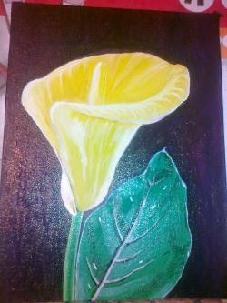Picturi cu flori Cala galbena cu frunza