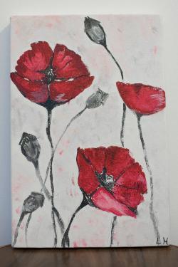 Picturi cu flori maci superbi