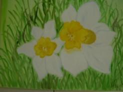 Picturi cu flori Pierdute in iarba