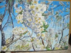 Picturi cu flori Floare de cires