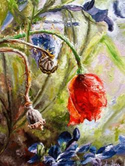 Picturi cu flori Macul sperantei