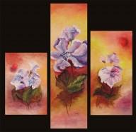 Picturi cu flori Apus de irisi