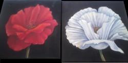 Picturi cu flori Doua flori