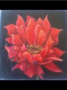 Picturi cu flori Floarea de foc
