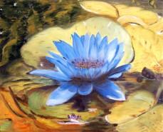 Picturi cu flori Floare albastra