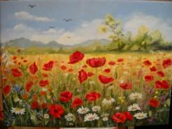 Picturi cu flori Camp cu maci 4