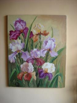 Picturi cu flori irisi infloriti