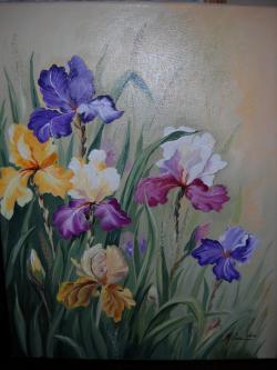 Picturi cu flori Irisi   R5