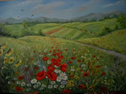 Picturi cu flori Primavara pe camp cu flori