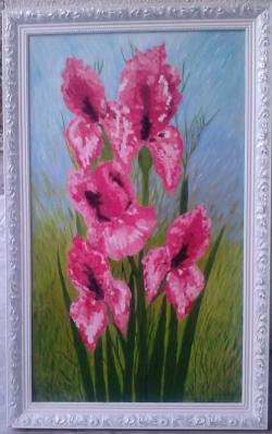 Picturi cu flori Irisi in roz