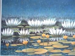 Picturi cu flori Nuferi pe lac