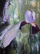 Picturi cu flori Iris