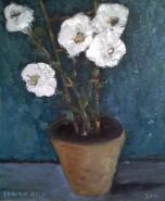 Picturi cu flori Flori albe in ghiveci
