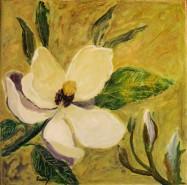 Picturi cu flori Magnolii albe