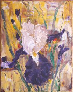 Picturi cu flori In gradina cu irisi