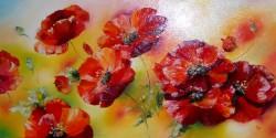 Picturi cu flori Cimp de maci