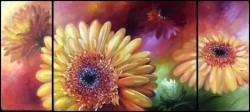 Picturi cu flori Floral triptic