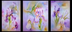 Picturi cu flori Irisi 1