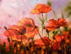Picturi cu flori maci in lumina