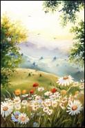 Picturi cu flori Morning silance