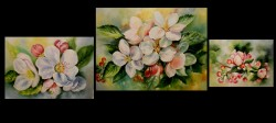 Picturi cu flori Triptic-parfum de mar