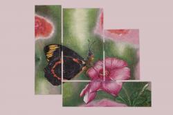 Picturi cu flori odihna