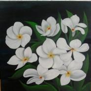Picturi cu flori Flori tropicale - plumeria