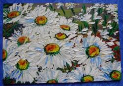Picturi cu flori Margarete 1